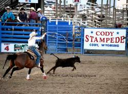 Rodeo, Cody Wyoming image 1