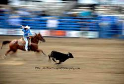 Rodeo Cody Wyoming image 2