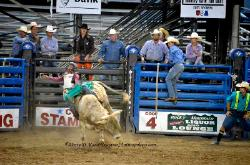 Rodeo Cody Wyoming image 3