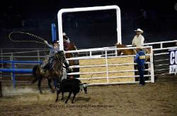 Rodeo Cody Wyoming image 4