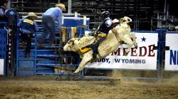 Rodeo Cody Wyoming image 6
